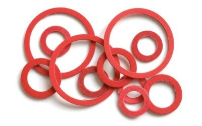 gasket evolution